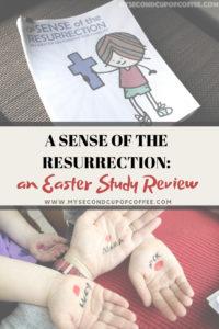 A Sense of the Resurrection Study