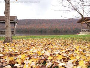 fall in Eastern PA
